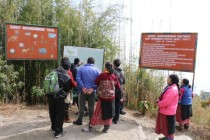 Looking at interps boards at Barsey sanctuary.jpg